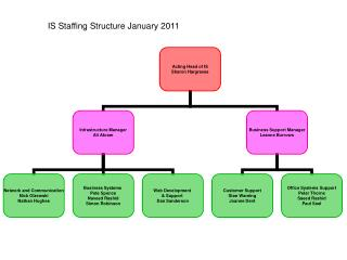 IS Staffing Structure January 2011
