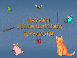 HAYVAN ISIRMALARINDA İLKYARDIM - 10 -