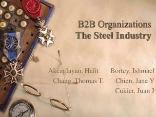 B2B Organizations The Steel Industry