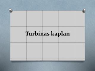 Turbinas kaplan