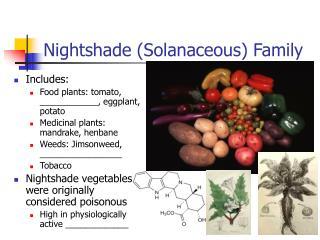 Nightshade Solanaceous Family