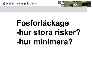 Fosforläckage -hur stora risker? -hur minimera?