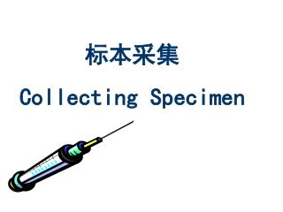 标本采集 Collecting Specimen