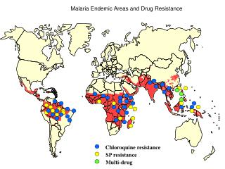 Malaria Endemic Areas and Drug Resistance