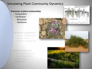 Simulating Plant Community Dynamics