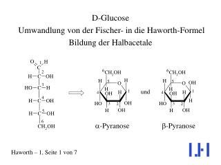 D-Glucose  Umwandlung von der Fischer- in die Haworth-Formel Bildung der Halbacetale
