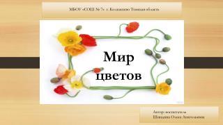 МБОУ «СОШ № 7»  г. Колпашево Томская область