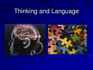 Thinking and Language