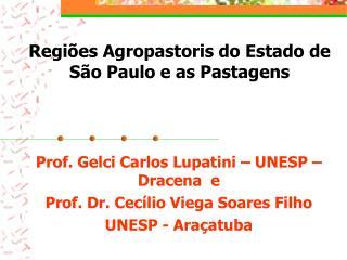 Regiões Agropastoris do Estado de São Paulo e as Pastagens