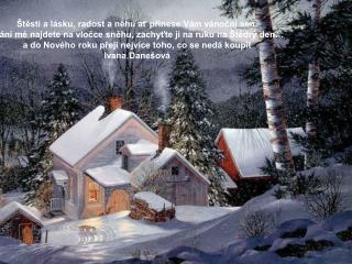 Štěstí a lásku, radost a něhu ať přinese Vám vánoční sen.