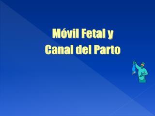 M vil Fetal y Canal del Parto