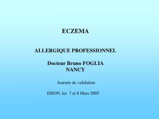 ECZEMA    ALLERGIQUE PROFESSIONNEL  Docteur Bruno FOGLIA NANCY   Journ e de validation DIJON, les  7 et 8 Mars 2