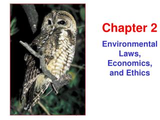 Environmental Laws, Economics, and Ethics
