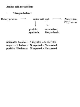 Amino acid metabolism · Nitrogen balance           protein   catabolism,