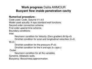 Work progress  Dalila AMMOUR Buoyant flow inside penetration cavity