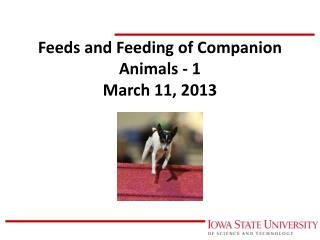 Feeds and Feeding of Companion Animals - 1 March 11, 2013