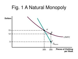 Fig. 1 A Natural Monopoly