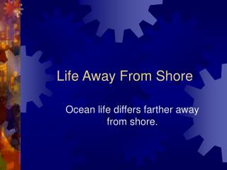 Life Away From Shore