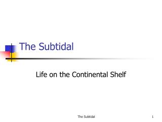 The Subtidal