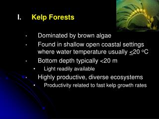 Kelp Forests Dominated by brown algae