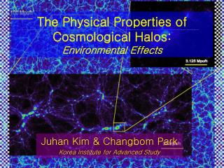 The Physical Properties of Cosmological Halos:  Environmental Effects