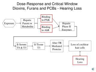 Dose-Response and Critical Window Dioxins, Furans and PCBs - Hearing Loss