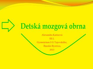 Alexandra  Katinov� III.L Gymn�zium  J.G.Tajovsk�ho ,  Bansk� Bystrica, 2013