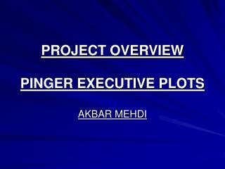 PROJECT OVERVIEW PINGER EXECUTIVE PLOTS AKBAR MEHDI