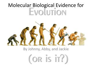Molecular Biological Evidence for