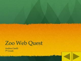 Zoo Web Quest