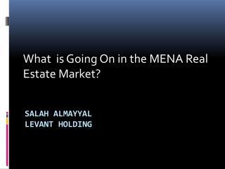Salah Almayyal Levant Holding