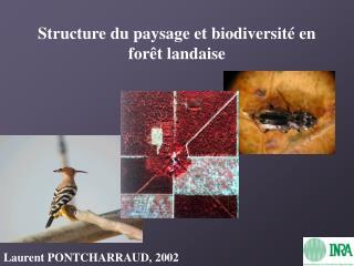 Structure du paysage et biodiversité en forêt landaise