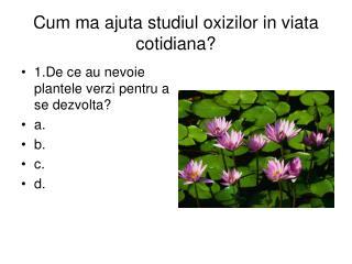 Cum ma ajuta studiul oxizilor in viata cotidiana?