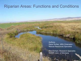 Riparian Areas: Functions and Conditions