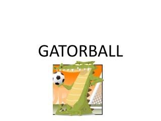 GATORBALL