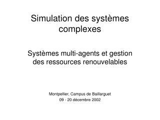 Simulation des systèmes complexes