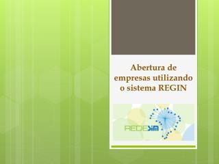 Abertura de empresas utilizando o sistema REGIN