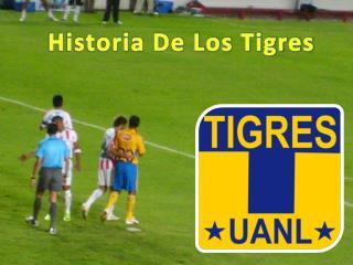 Historia De Los Tigres