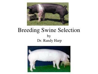 Breeding Swine Selection by  Dr. Randy Harp