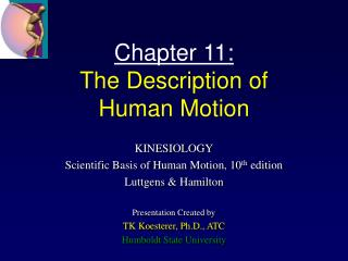 Chapter 11: The Description of  Human Motion