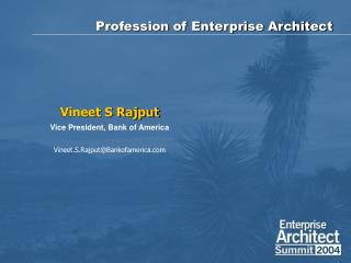 Profession of Enterprise Architect