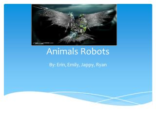 Animals Robots