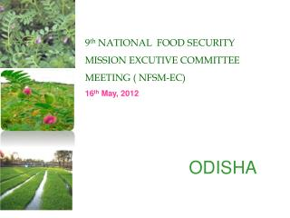 9 th  NATIONAL  FOOD SECURITY MISSION EXCUTIVE COMMITTEE MEETING ( NFSM-EC) 16 th  May, 2012