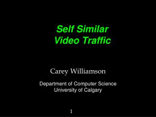 Self Similar Video Traffic