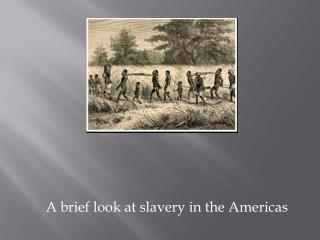 A brief look at slavery in the Americas