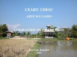 UDESC – CEART – DAP / PPGAV ARTE RELACIONAL NOS LIMITES DO REAL José Luiz Kinceler 2009/01