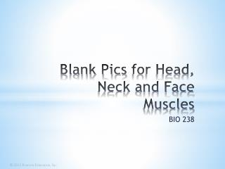 Blank Pics  for Head, Neck and Face Muscles