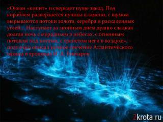 В глубинах океана открыли червей, несущих светящиеся «бомбы»