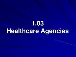 1.03  Healthcare Agencies