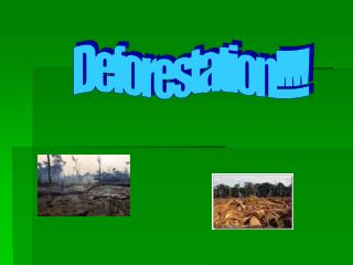 Deforestation!!!!